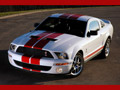 Download Free Shelby Screensaver- Shelby Shelby Cobra GT500 Red Stripe