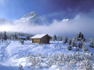 Download Free Winter Wallpaper