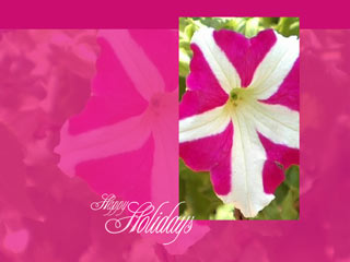 Download Free Happy Holidays Wallpaper